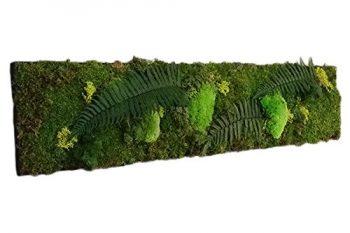 Tableau végétal naturel stabilisé