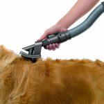 Pièce d'aspirateur pour poils d'animaux