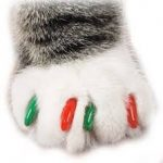 Faux ongles pour chat