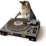 Grattoir platine pour chat