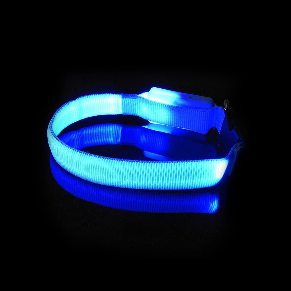 Collier insolite à LED pour chien