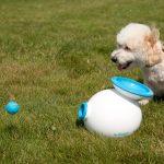 Lanceur de balles automatique pour chien