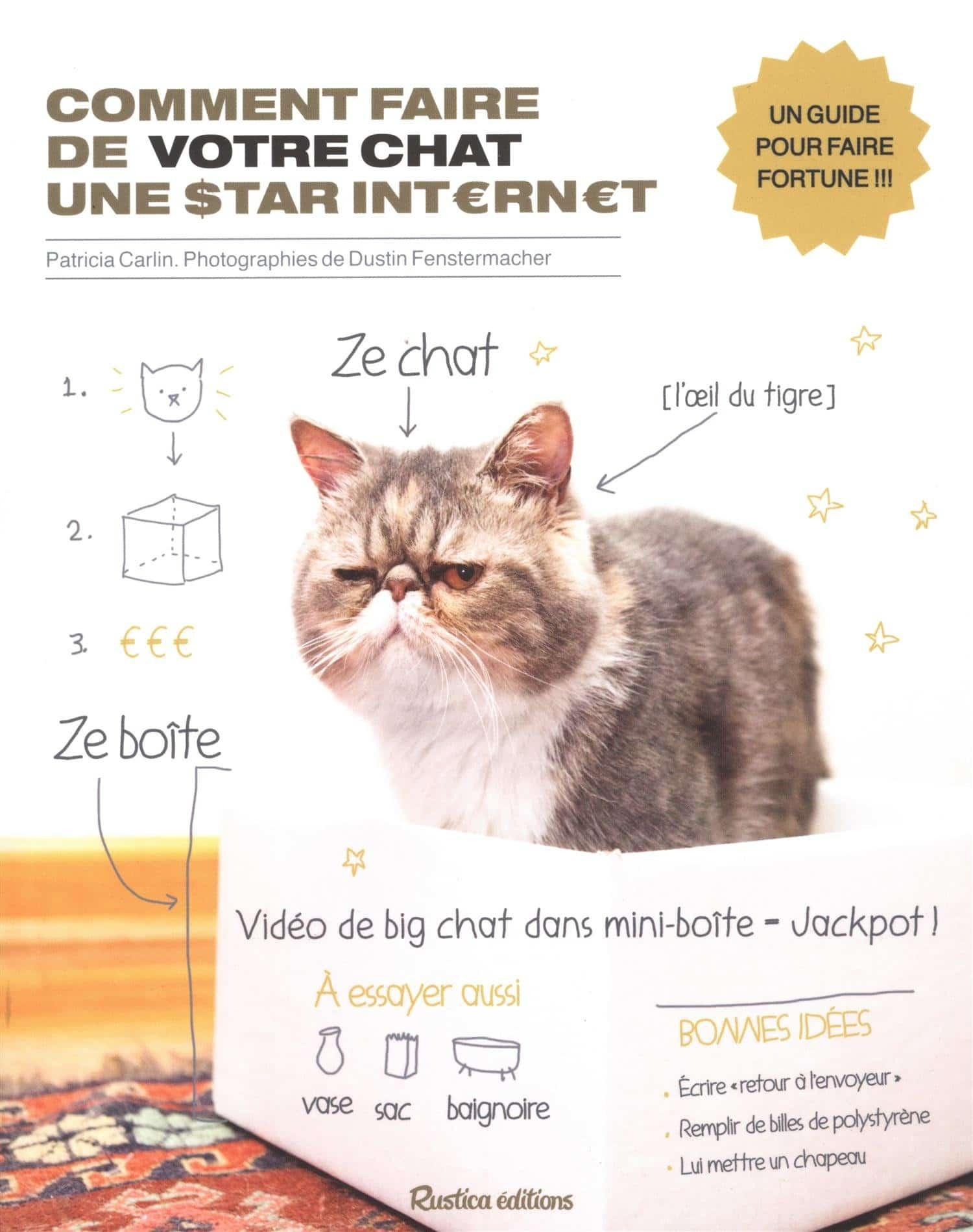 Livre insolite comment faire de votre chat une star d'internet