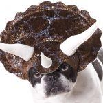 Cornes de tricératops pour chien