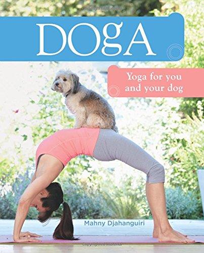 Livre insolite de yoga pour chien