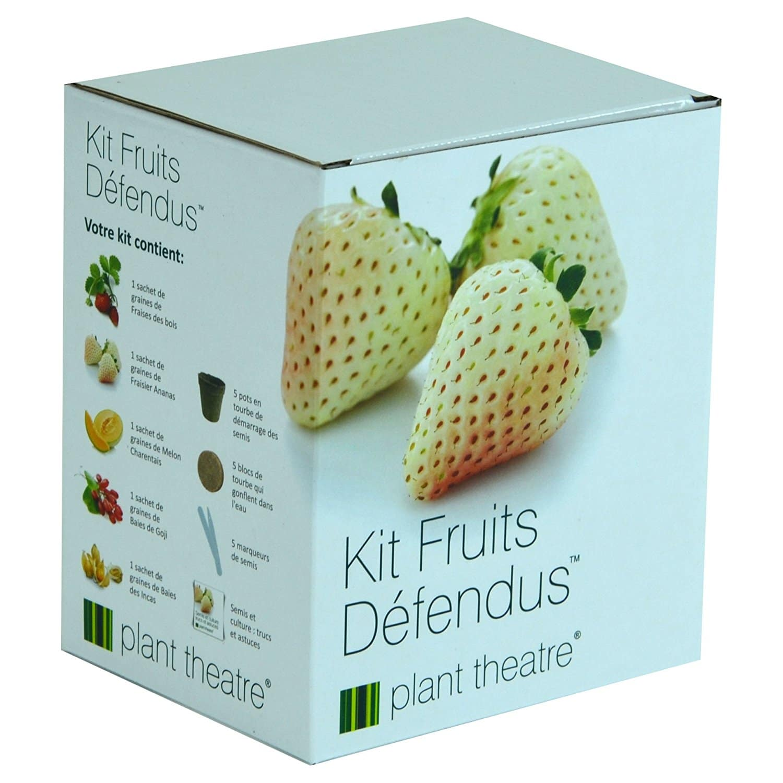Kit fruits défendus insolite