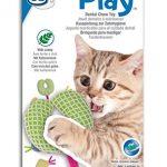 Jouet dentaire pour chat