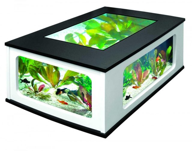 Table basse aquarium insolite