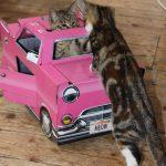 Abri voiture pour chat