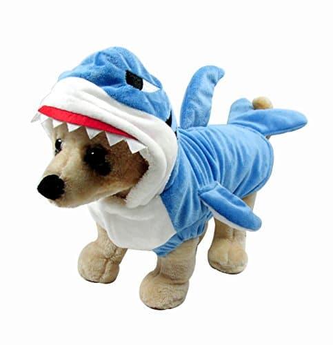 Déguisement de requin pour animaux insolite