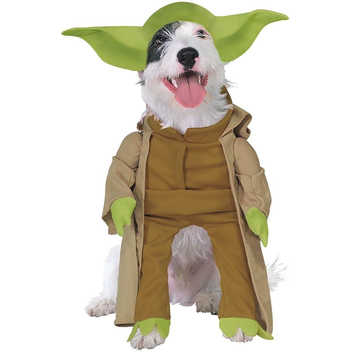 Déguisement Yoda insolite pour chien