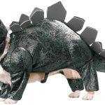 Déguisement dinosaure pour chien