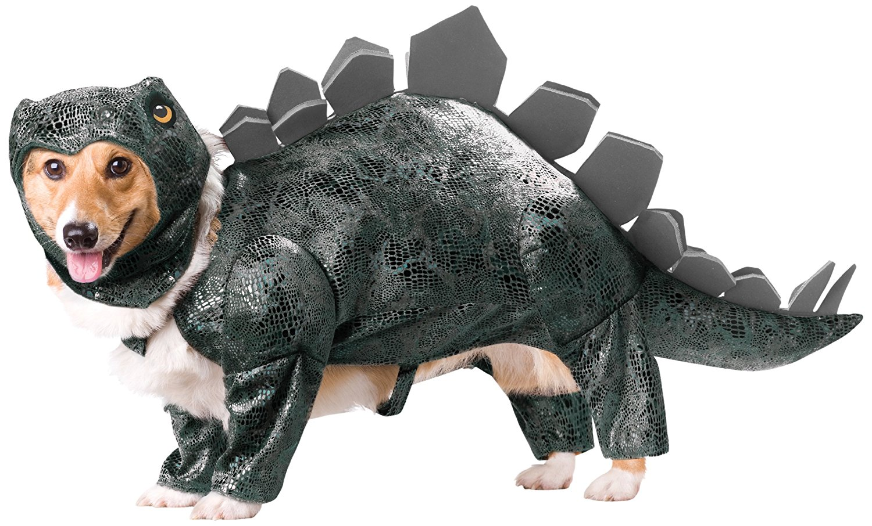 Déguisement insolite dinosaure pour chien