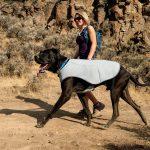 Veste rafraîchissante pour chien