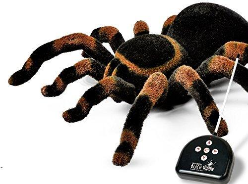 Araignée télécommandée insolite