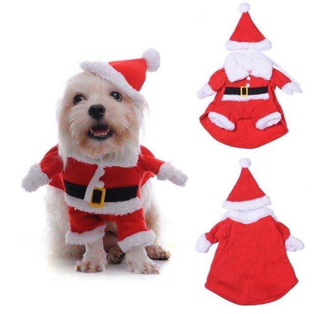 Costume de noel pour animaux