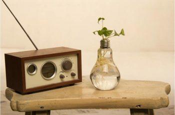 Vases ampoules insolites