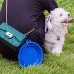 Gamelle rétractable pour animaux