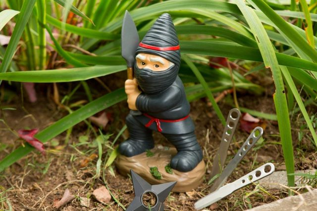 Nain de jardin ninja insolite