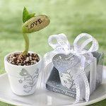 Plant de haricot avec message d'amour