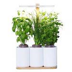 Smart Lilo potager d'intérieur prêt à pousser